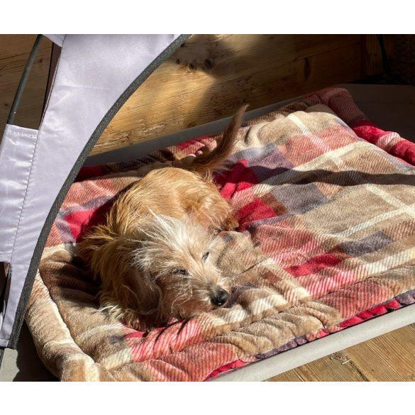 Kiwi Pet's kockás lapfekhelyek