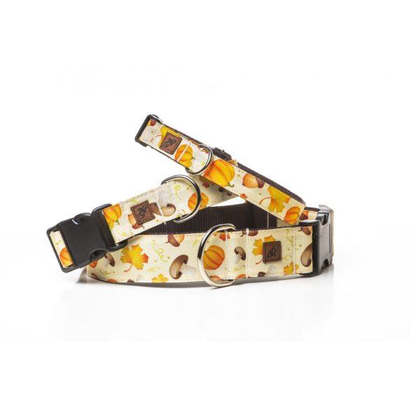Delight's Dog Design őszi tökös-gombás nyakörvek