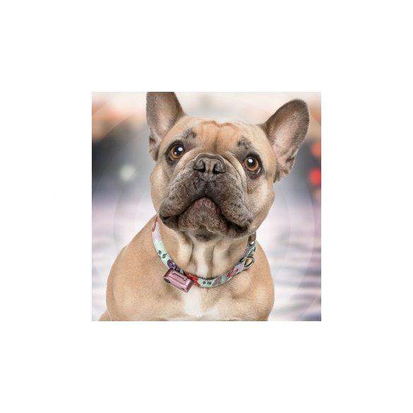 Vegyszermentes, tölthető kullancs- és bolhariasztó medál kutyáknak és macskáknak, TICKLESS - mini RÓZSAARANY