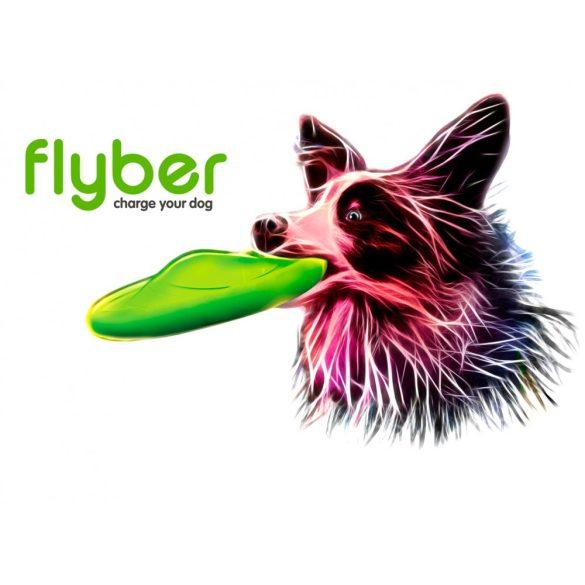 Flyber - repülő csészealj