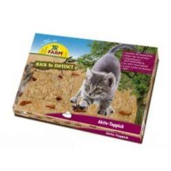 JR aktív szőnyeg cicáknak