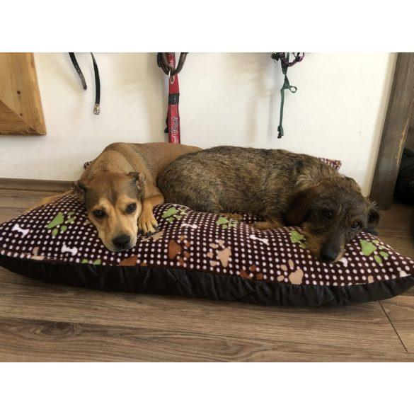 Zöld pöttyös kutyapárnák több méretben - Kiwi Shop by Kutyakuckó