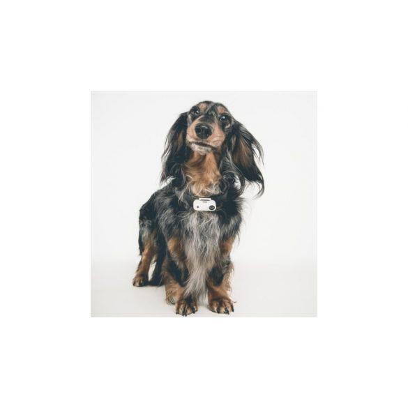 Vegyszermentes, tölthető kullancs- és bolhariasztó medál kutyáknak és macskáknak, TICKLESS - mini GYÖNGYHÁZ