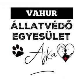 Támogasd 1 kg kutyatáppal az ajkai VAHUR ÁLLETVÉDŐ EGYESÜLETET!